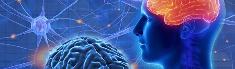 13. Neuromedicine